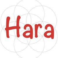 Centro Hara. La Escuela